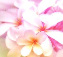 Fragrant Plumeria by Karen Lewis