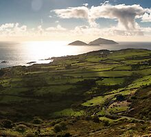 Ireland - Irish Landscape by Stephen Cullum