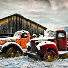 Old Trucks in HDR #3 by peaceofthenorth