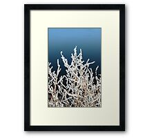 icy twigs and branches in snow against blue Framed Print