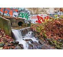 Tattooed Waterfall Photographic Print