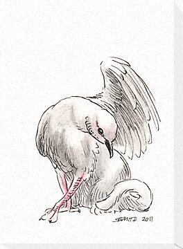 Sketch -- Mythological House Griffin, Dove Variety by Stephanie Smith