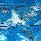 Sunlit Blue by Barbara Ingersoll