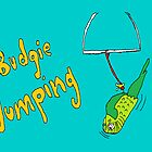 Budgie Jumping by Affenhase