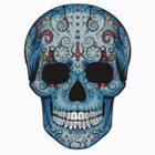 Skull- Study In Blue by Iain Maynard