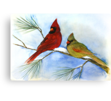 cardinals on a pine branch wintry handmade aquarelle Canvas Print