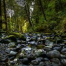 Nice And Cool by Charles & Patricia   Harkins ~ Picture Oregon