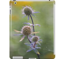 Autumn Morning iPad Case/Skin
