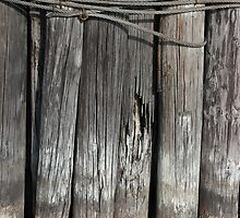 Tall Pilings 2 by marybedy