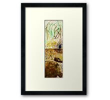 bower bird and bower Framed Print