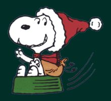 Snoopy and Christmas Sleigh by gemzi-ox