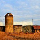 Old Farm by EBArt