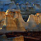Beauty Of The Bisti/De-Na-Zin Wilderness by Bob Christopher