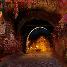 Old Quebec by Igor Zenin