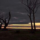 Lake Hindmarsh by Hedoff