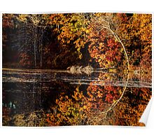 Curves Of Autumn Poster