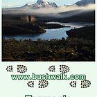 Bushwalk Tasmania Calendar 2013 by Bushwalk
