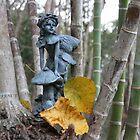 Fairy in the Rainforest by aussiebushstick