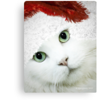 Wrapping Presents 101 for Cat Owners Canvas Print
