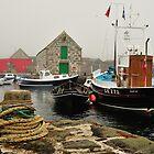 Hay's Dock, Lerwick, Shetland by Richard Ion