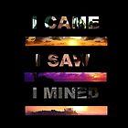 I Came, I Saw, I Mined  by Rowans Designs