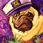 Captain Pug by Jennifer Ferdinandsen