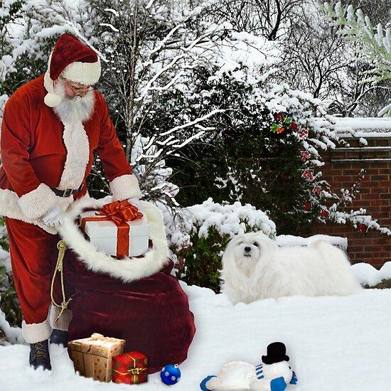 Christmas Morning by Morag Bates