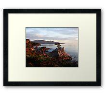 The Lone Cypress 2 Framed Print
