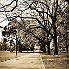 Alexandra Avenue by -aimslo-