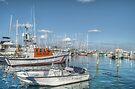 Marina behind Pop's Deck in Nassau, The Bahamas by 242Digital