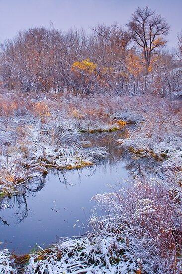 Stillness Of A Late Fall by John  De Bord Photography