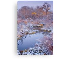 Stillness Of A Late Fall Canvas Print