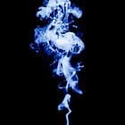 Blue smoke by Phillip Shannon