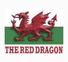 WELSH FLAG; THE RED DRAGON OF WALES by TOM HILL - Designer