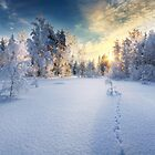 u by Mikko Lagerstedt