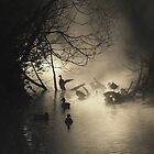Ducks in the Mist by Helen J Cherry