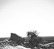 Mungo Skyline B&W by Candice84