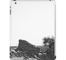 Mungo Skyline B&W iPad Case/Skin