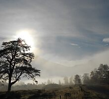 Scottish Valley Mist by Samuel Shelton