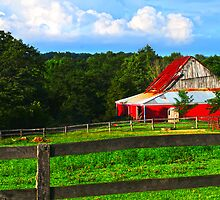 Corral and Barn  by Randy & Kay Branham