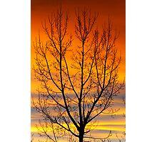 Gavins Sunset 2 Photographic Print