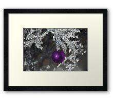 "'Its the holiday season....."" Framed Print"