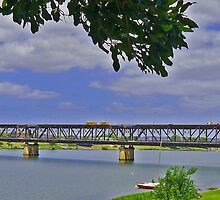 Bridge, Grafton, New South Wales, Australia (panorama) by Margaret  Hyde