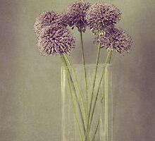 Fleurs by Anne Staub