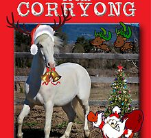 Meeerry Christmas form Corryong by GreatArtPhotos