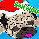 Humpug! by digihill