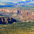 Green in Canyonlands by Graeme  Hyde