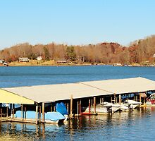 Catawba Marina by Cynthia48