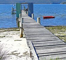 Jetty, Carnarvon Beach, Tasmania, Australia by Margaret  Hyde