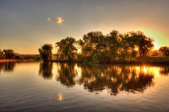 Good Night Canberra  by Kym Bradley